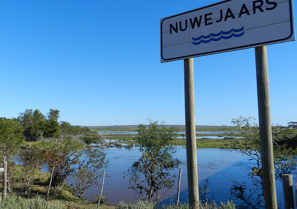 The Nuwejaars River: The artery of our #waterscapes